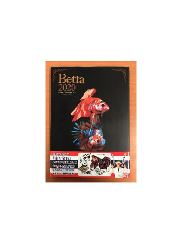 Libro BETTA 2020 Koii Yamazaki & Takashi Omika